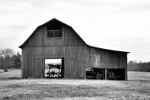 Beaverdam barm I by Troy  Skebo