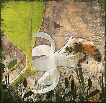 Bee and Praying Mantis by Lesley Smitheringale