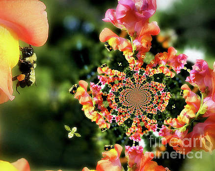 Bee On Snapdragon Flower Abstract by Smilin Eyes  Treasures