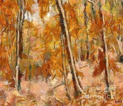 Beech Forest In Autumn by Dragica Micki Fortuna