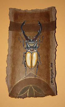 Beetle III by Gonca Yengin