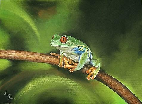 Before Leap by Pravin  Sen