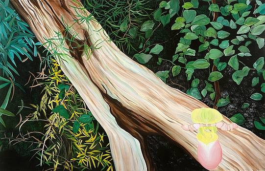 Beginning Life by Sunhee Kim Jung