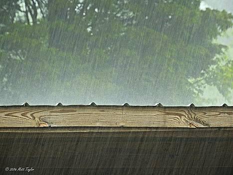 Beginning May With Heavy Rain by Matt Taylor