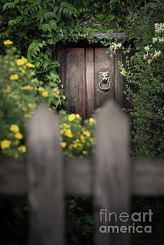 Svetlana Sewell - Behind a fence