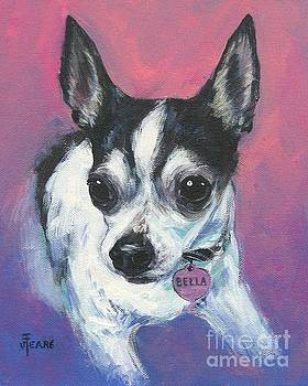 Bella by Vickie Fears