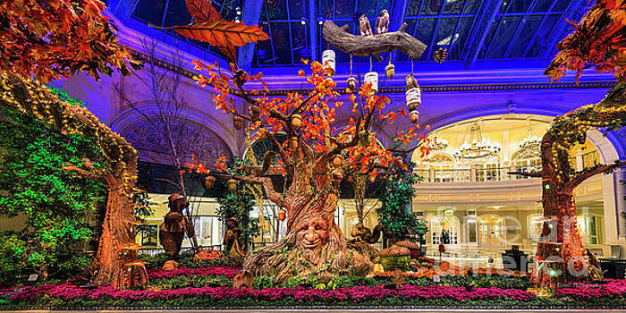 Bellagio Enchanted Talking Tree Ultra Wide 2016 by Aloha Art