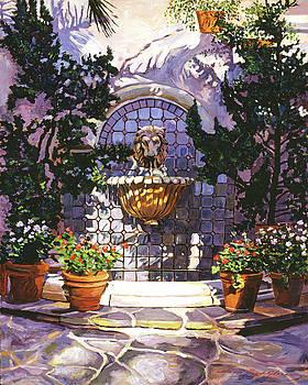 David Lloyd Glover - Bellagio Fountain