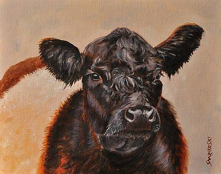 Belted Galloway Cow by Louise Charles-Saarikoski