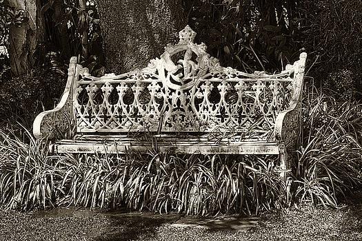 Bench by Eunice Gibb