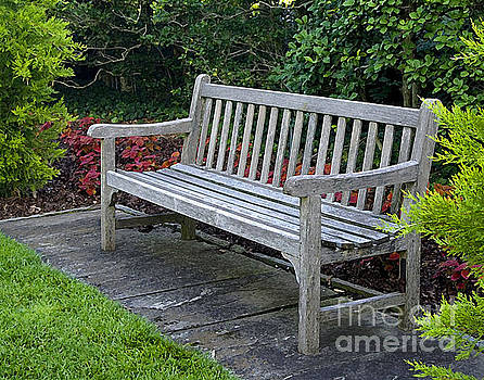 Bench in the Garden by Robert  Suggs