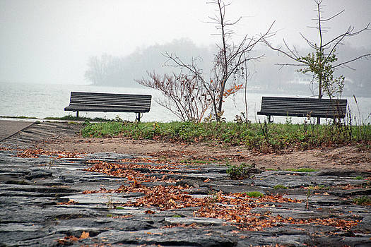 Benches at Webster Pier by Gerald Salamone