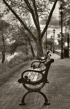 Mel Steinhauer - Benches On Riverside Drive Sepia Tone