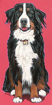 bernese Mountain Dog Beau by Nadi Spencer