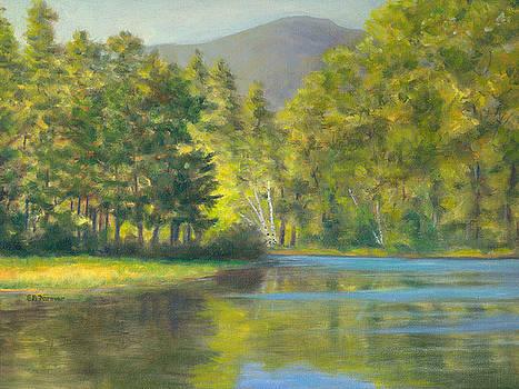Berry Pond by Elaine Farmer
