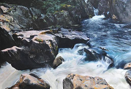 Harry Robertson - Betws-y-Coed Waterfall