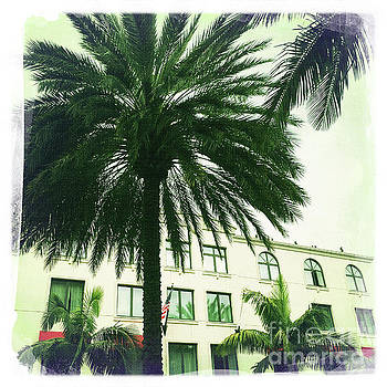 Beverly Hills Rodeo Drive 6 by Nina Prommer