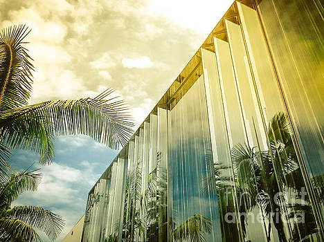 Beverly Hills - Rodeo Drive - Palm Reflections II by Pete Edmunds