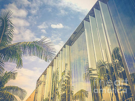 Beverly Hills - Rodeo Drive - Palm Reflections by Pete Edmunds