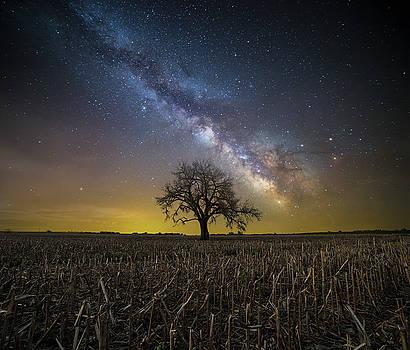 Beyond by Aaron J Groen