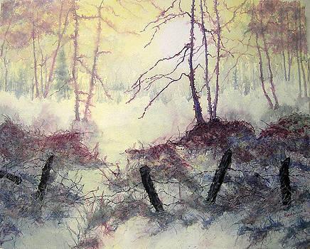Beyond the Fence by Carolyn Rosenberger