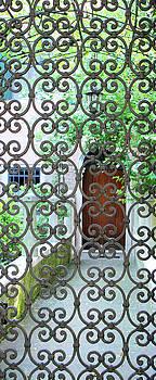 Beyond the Gate by Vicki Hone Smith