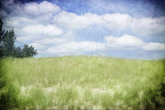 Beyond The Grassy Dune by Kathi Mirto