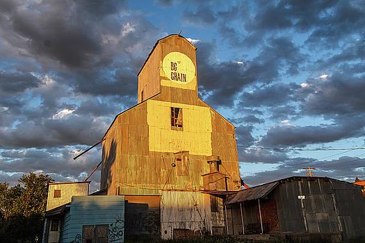 BG Grain Elevator by Steven Bateson