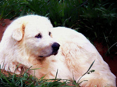 Bianca-Great Pyrenees Painting 2008 by Ericamaxine Price