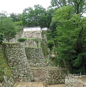 Bicchu-Matsuyama Castle by Taikan Nishimoto