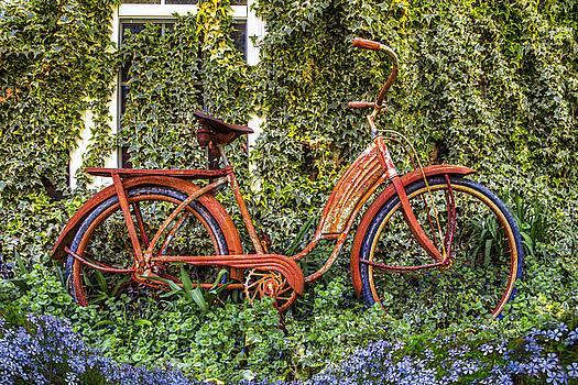 Debra and Dave Vanderlaan - Bicycle in the Garden