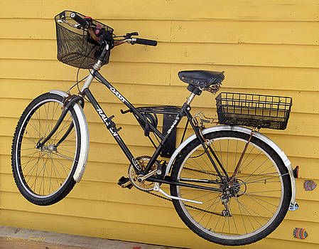 Bicycle on a Float House Victoria British Columbia by Barbara Snyder