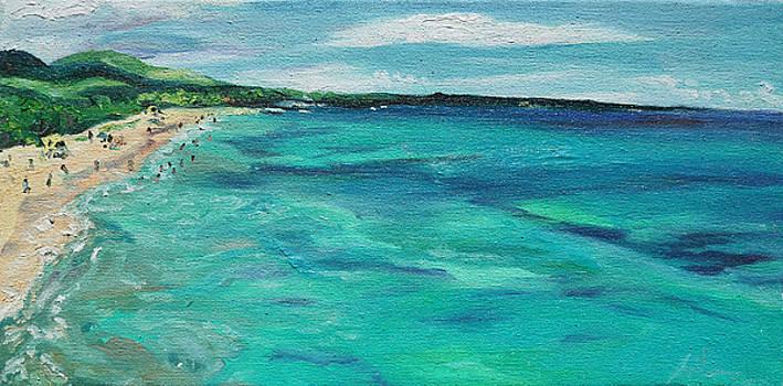 Big Beach by Joseph Demaree