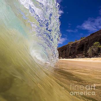 Big Beach Maui Shore Break Wave by Dustin K Ryan