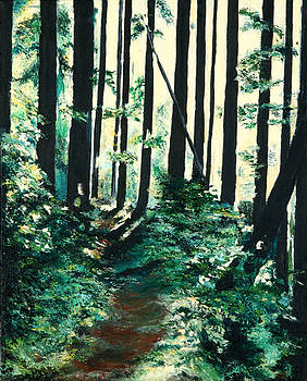 Big Quilcene River Trail by Richard Beauregard