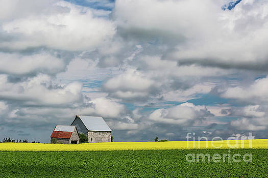 Big Sky Prince Edward Island by Verena Matthew