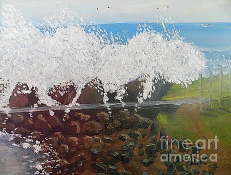 Big Splash over the Seawall by Pamela Meredith