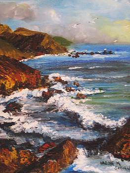 Big Sur California by Irene Schilling