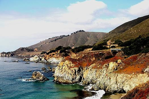 Big Sur by Charlene Reinauer