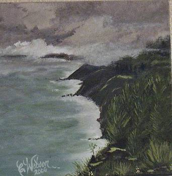 Big Sur by Cindy Watson