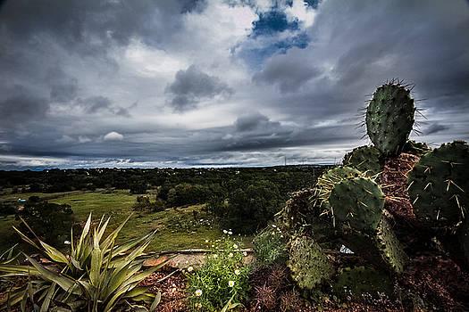 Big Texas Sky by Amber Dopita