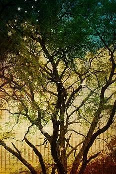 Big Tree in the Sunlight by Robin Regan