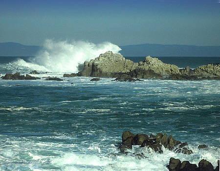 Joyce Dickens - Big Water At Pacific Grove CA