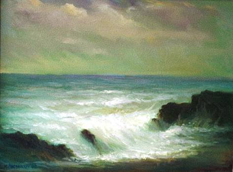 Big Wave by Michael Chesnakov