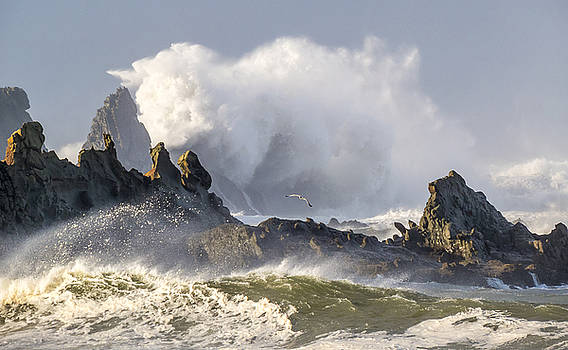 Big Waves Breaking off the rocks in front of the Cape Arago Light House by Kristal Talbot
