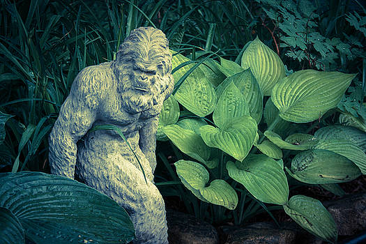 Bigfoot Sighted by Lyle Hatch