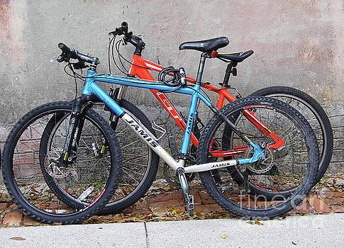 Bikes Left Alone by D Hackett