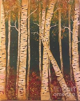 Birch by Catherine Visconte