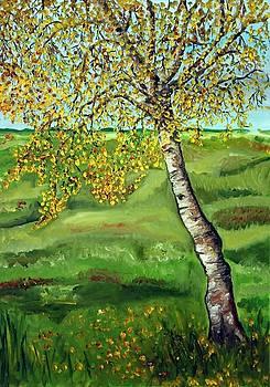 Birch by Nancy Van den Boom
