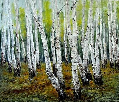 Birch Trail by Boris Garibyan